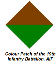 19 Bn Colour Patch