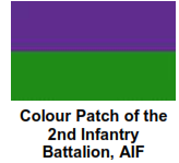 2 Bn Colour Patch
